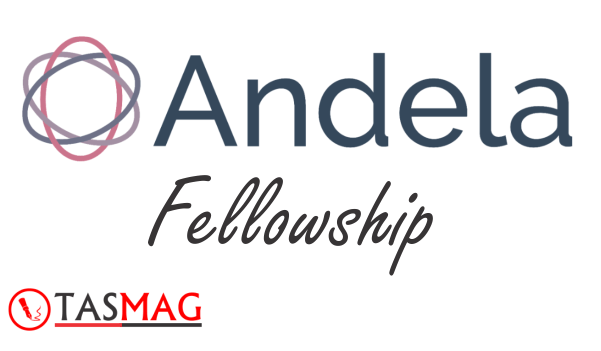 Andela Fellowship