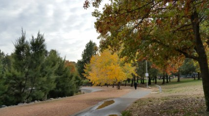 John Knight Memorial Park, Lake Ginninderra