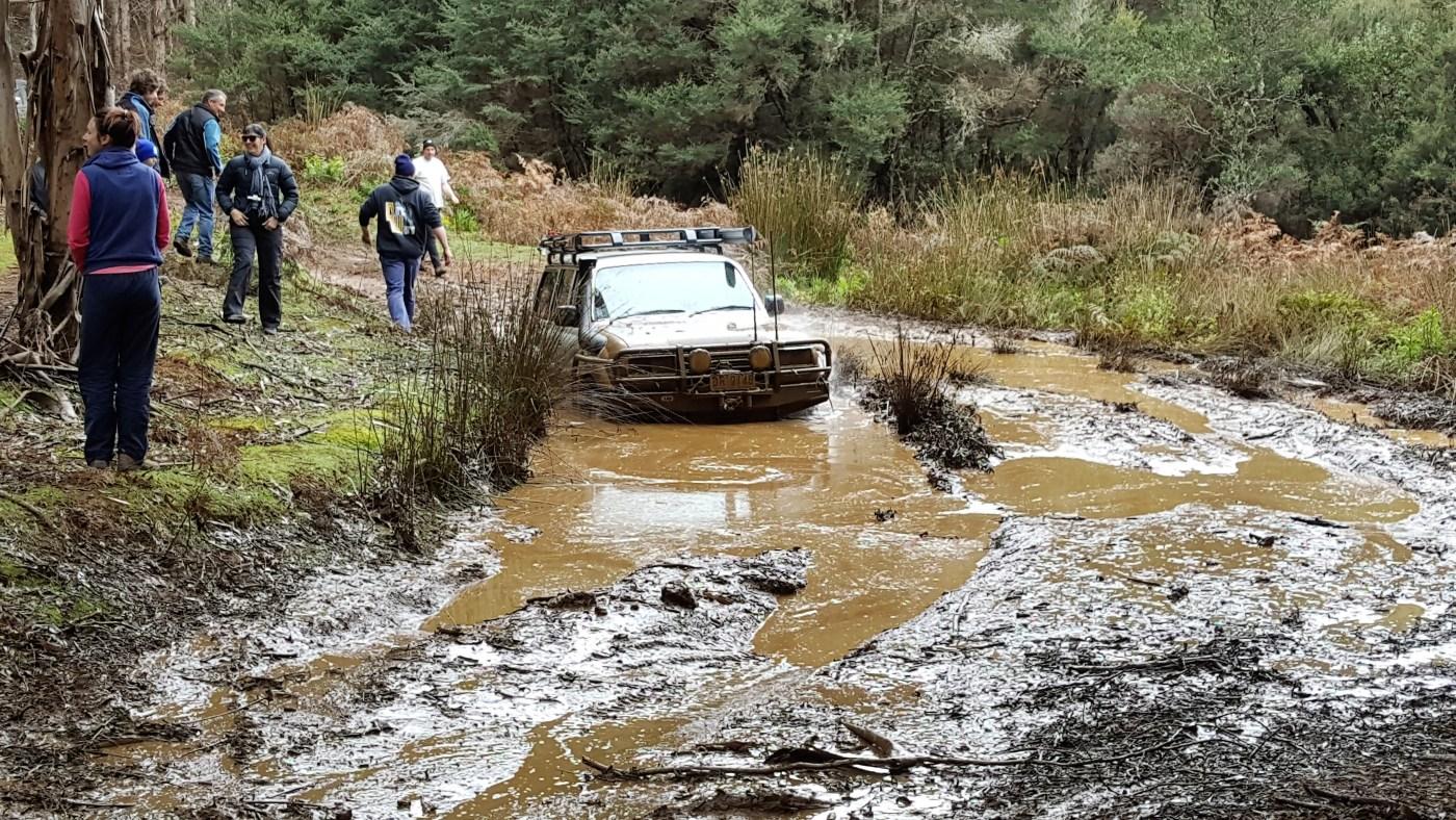 80 stuck in big bog hole - Mt Cleveland 4WD Trip