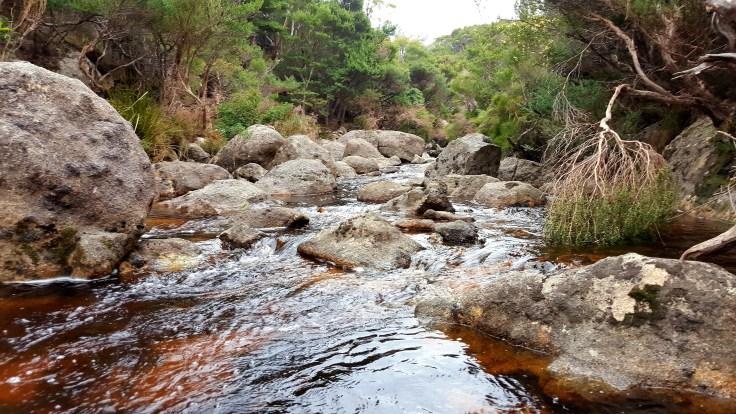 cornwell-creek