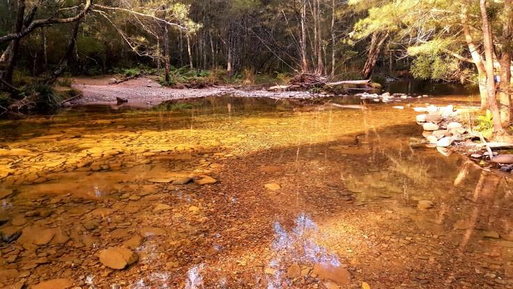 creek-2