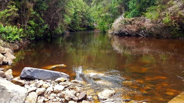 hazelwood-river