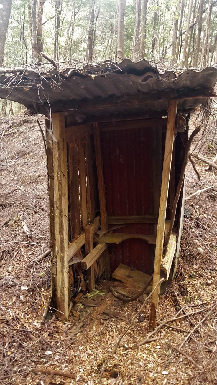 old-toilet