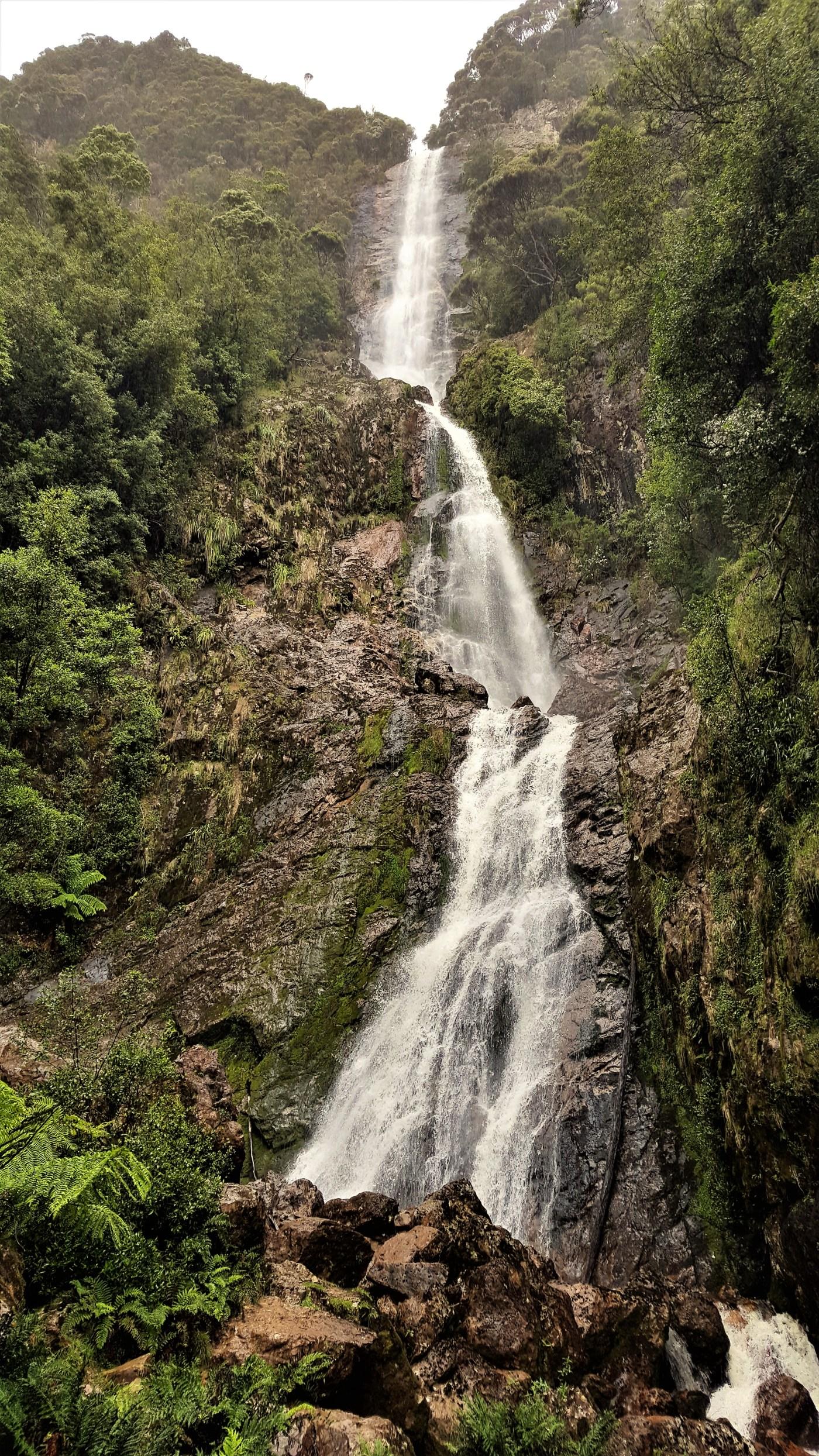 montezuma falls - Pieman River To Trial Harbour
