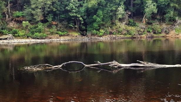 waters-merging