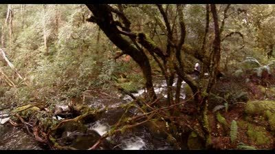 netherby creek falls std.original - netherby-creek-falls-mp4