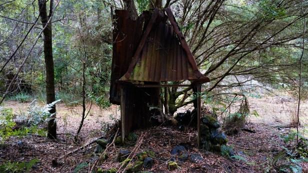 Hut Remains 1