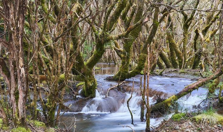 Creek in Magnet
