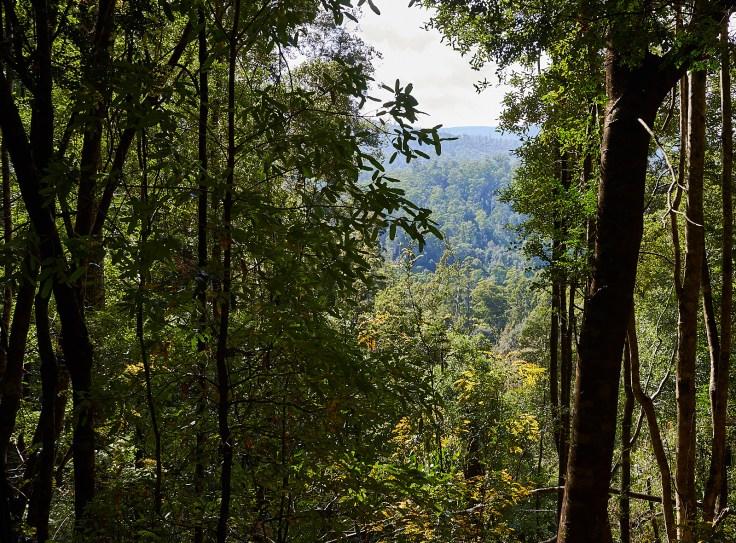 Good views along the way