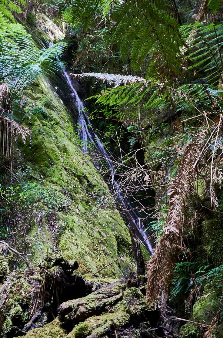 Brothers Creek Falls 2