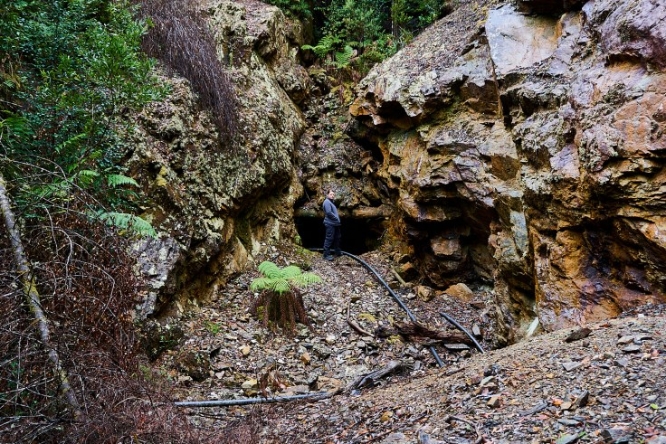 Mt Farrell Mine 1