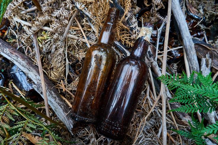 Adamsfield Bottle Dump 1