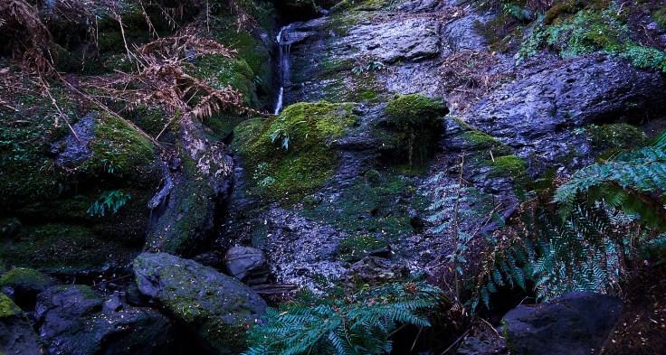 Campbells Rivulet Falls 1