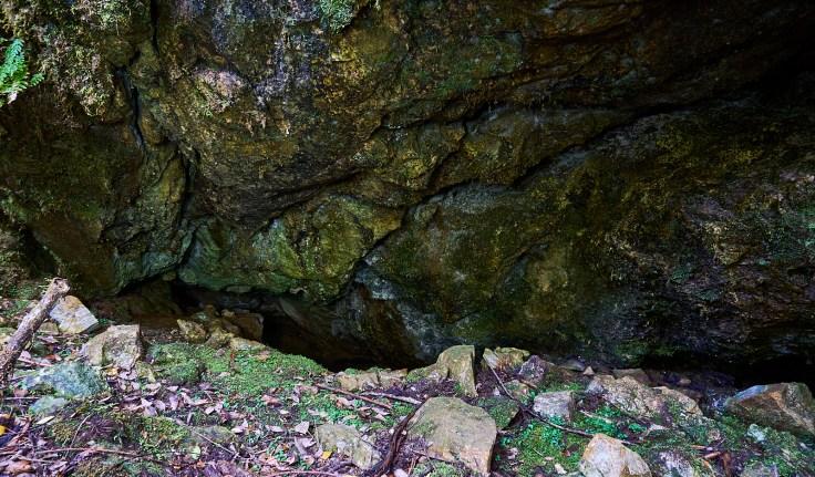 Central Creek Karst 1