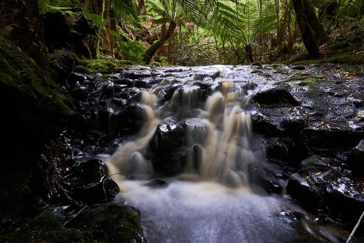 Eagle Hill Creek Falls 1 1