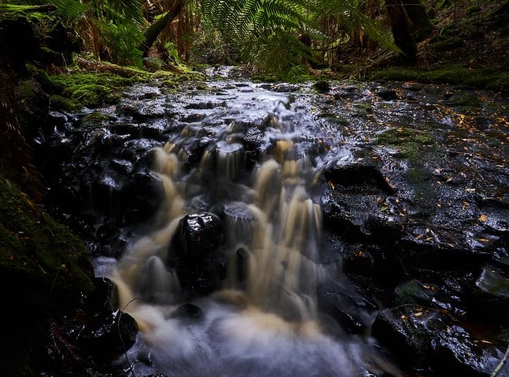 Eagle Hill Creek Falls 2 1
