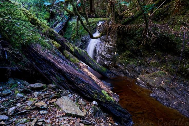 Atlas Creek fall first 1