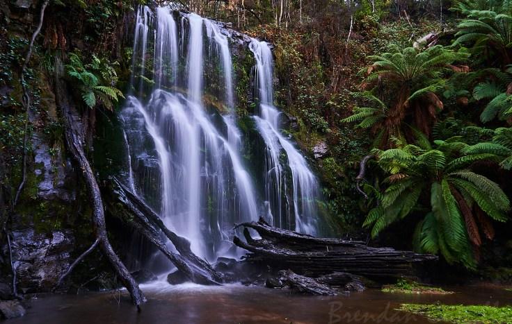 Garner Creek Falls 1 1