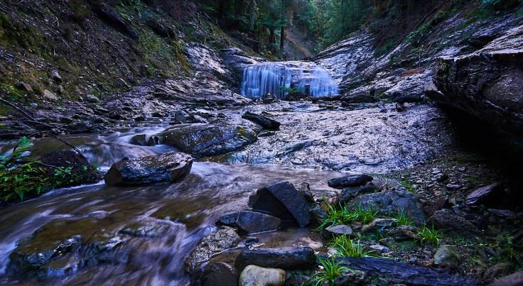 Fern Falls 1