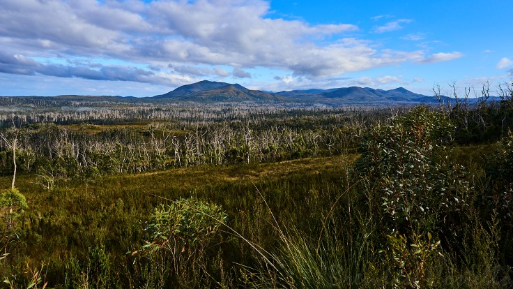Norfolk Range 1