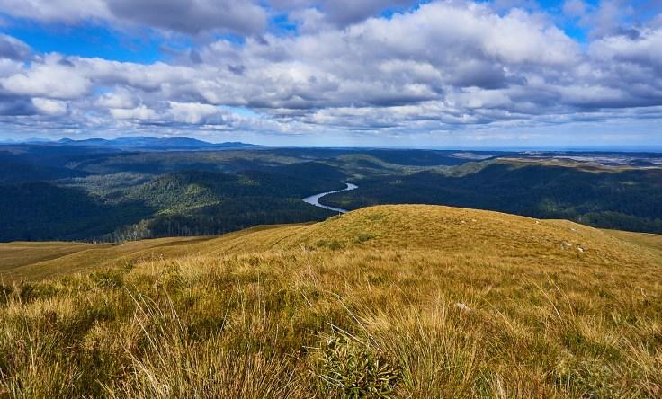 Pieman River 1