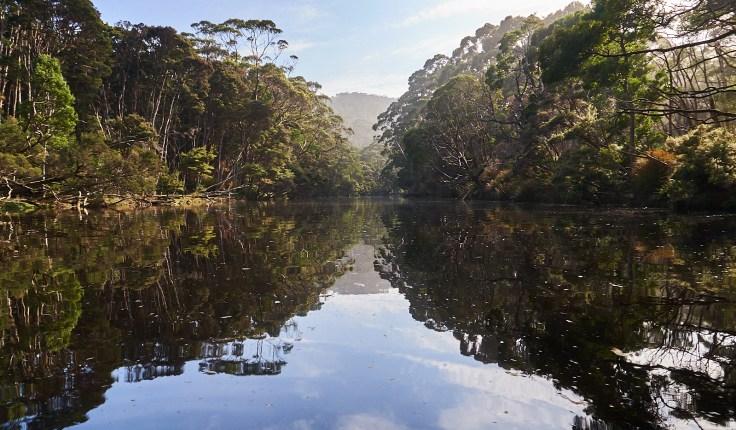 Little Henty River 1 1