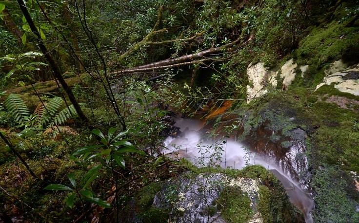 Concert Creek Falls 2 1