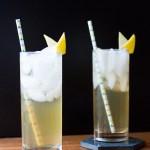 Grapefruit Bourbon Lemonade | Taste and Tipple