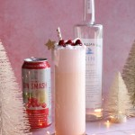 Comet's Gin Fizz - Georgian Bay Cranberry Gin Smash | Taste and Tipple