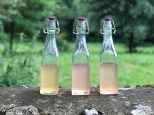 Bottles of rhubarb gin