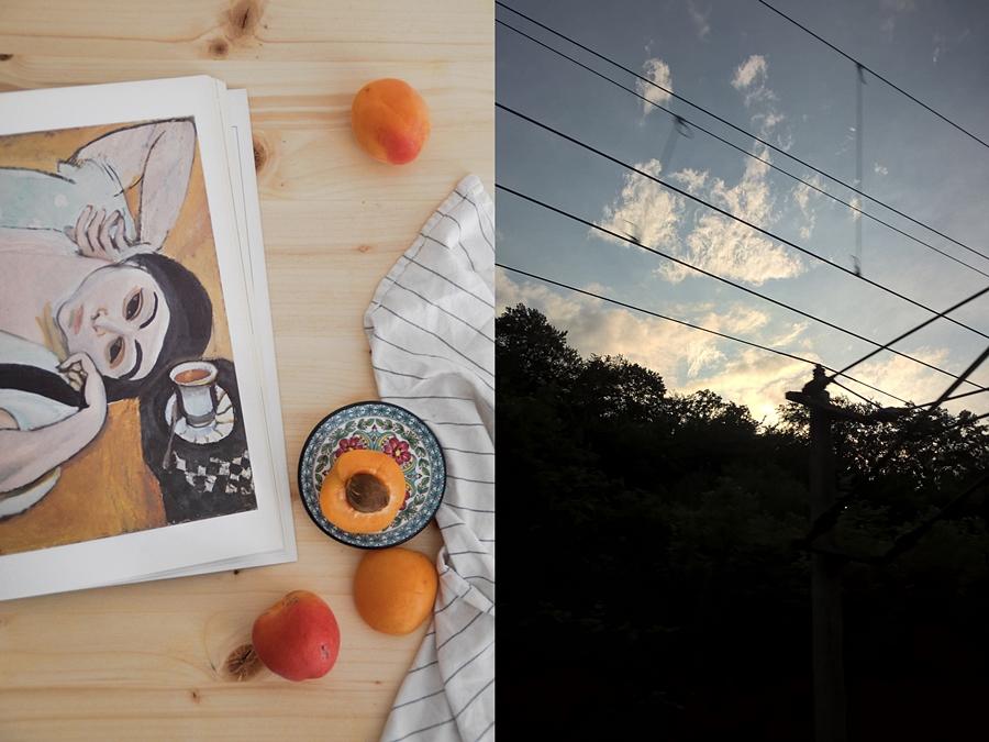 Matisse Kunstbuch vom Flohmarkt und Sonnenuntergang in der Bahn im Sommer.