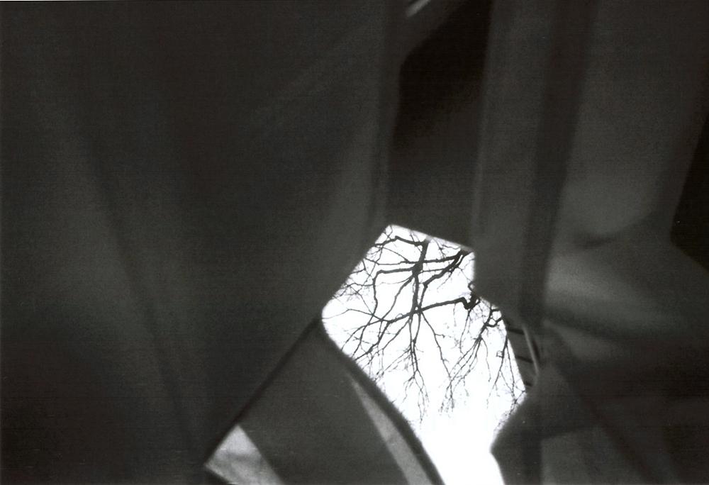 Analoge Fotografie schwarz-weiß auf Film.