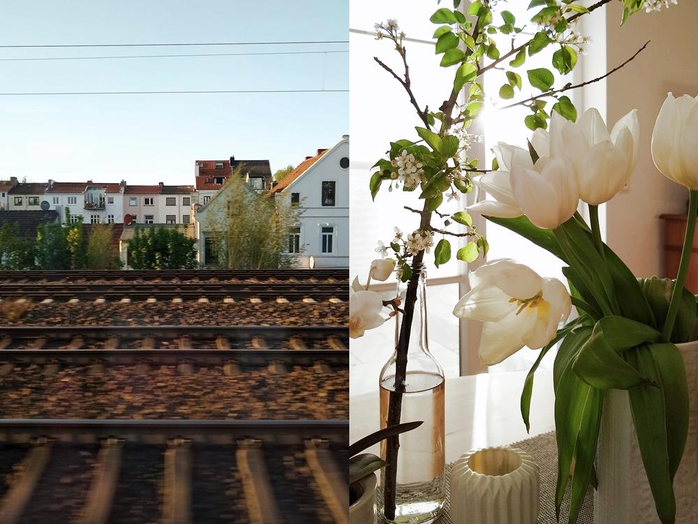 Outtakes – Monatsrückblick März & April 2020  - Weiße Tulpen als Frühlingsdeko.