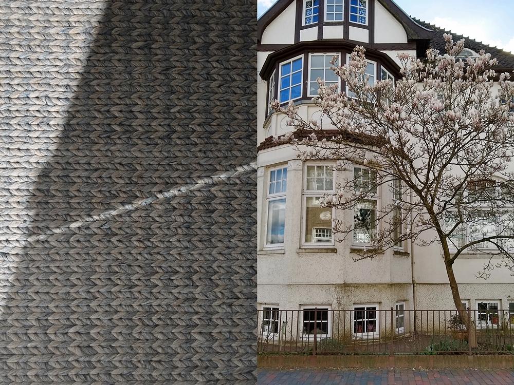 Outtakes – Monatsrückblick März & April 2020  - Oldenburg im Frühling: Magnolien blühen.