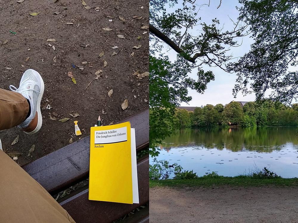 Frühsommer - Mein Wochenende in Bildern | Kaisenteich in Oldenburg im Dobbenviertel