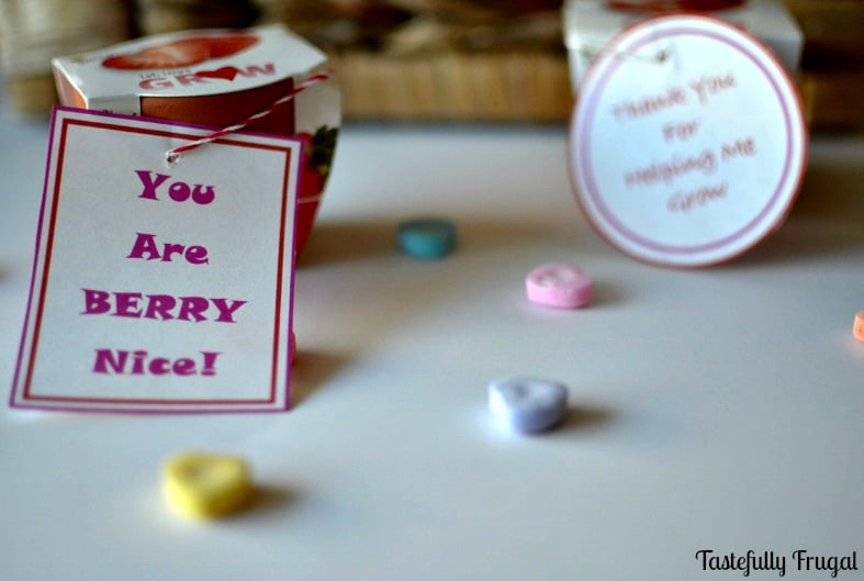 Strawberry Teacher Gift: Perfect for Valentine's Day or end of the year
