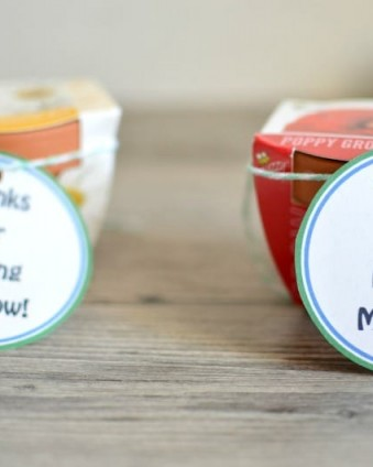 Thanks For Helping Me Grow: Make these teacher gifts for $1 | Tastefully Frugal