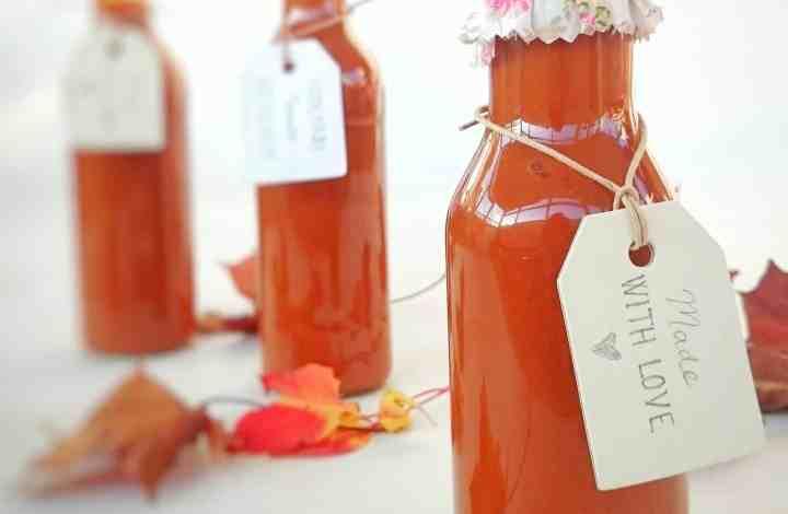 Homemade Lush Tomato Ketchup Gift Recipe – Christmas Idea