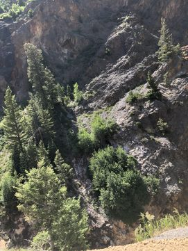 South of Ouray, CO
