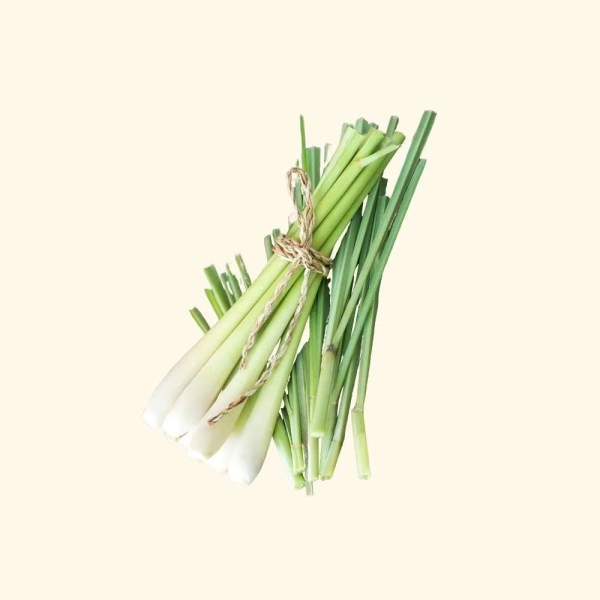 lemongrass gift set Bio Oil 4