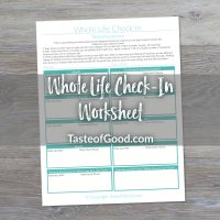 Whole Life Check-in Worksheet