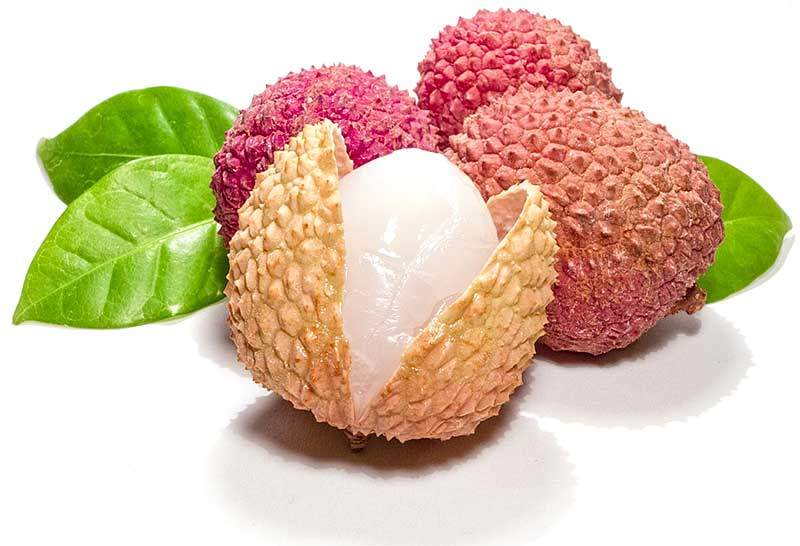 Lychees From Northern Thailand