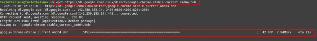 Install Google Chrome for Ubuntu 20.04 Linux wget command
