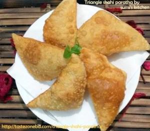 http://tastezonebd.com/triangle-shahi-paratha/