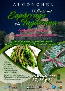 Feria Espárrago y la Tagarnina