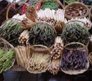 Asparagus Market Day in France