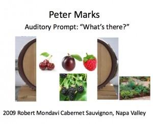 peter marks, wine tasting for neuroscientists, tastingroomconfidential.com