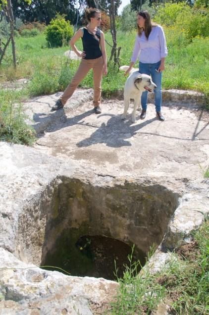 Ancient wine press Clos de Gat winery