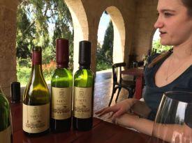 noam har'el clos de gat winery