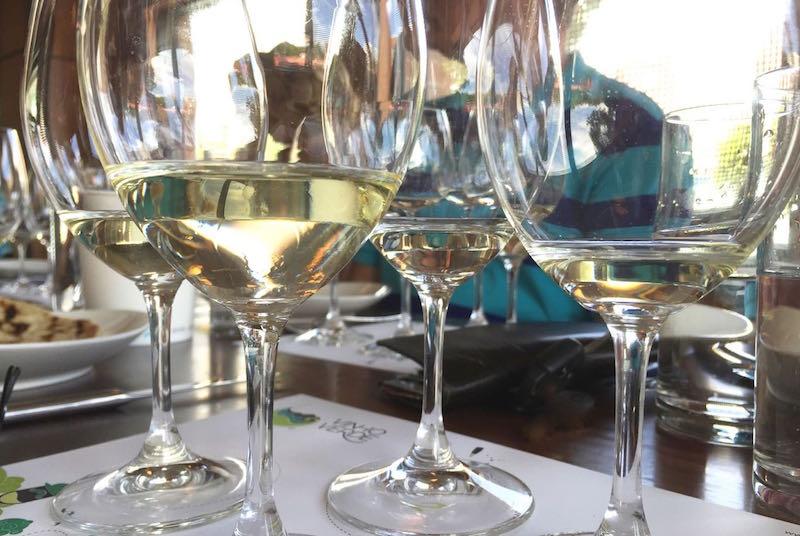 vinho verde line up